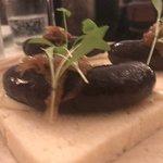 Foto van Ester Restaurant