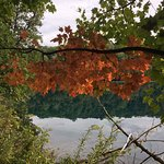 First sign of Autumn at Green Lake State Park