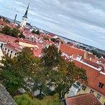 Photo of Tallinn Estonia Cruise Port