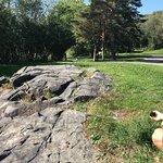 Bell Park Walkway / Boardwalk Resmi