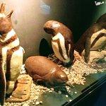 Havanna Museo del Chocolateの写真