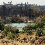 Sacramento Rail Trail Foto