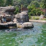 صورة فوتوغرافية لـ Prospect Park Zoo