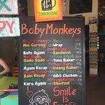Photo of Warung Baby Monkeys