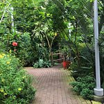 Foto de Myriad Botanical Gardens