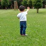 Bilde fra Villa Lobos Park