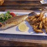 poisson de jour