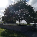 Oak Dump Cemetery