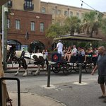 Beautiful horses pull carriages around Charleston City Market area.