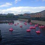 Озеро с фламинго