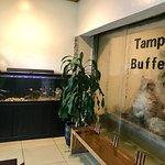 Foto de Tampa Buffet