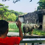 壽山動物園照片