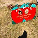 Foto de Afton Apple Orchard