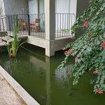 Fresco Water Villa Photo