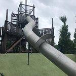 麥琪戴利公園照片