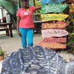 la tortuga de ecoventure! ayudan a su proteccion