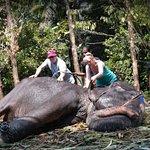 Natuur- & wildlifetochten