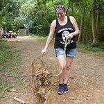 ภาพถ่ายของ สวนสัตว์เปิด ซาฟารี ปาร์ค