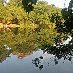 ภาพถ่ายของ Kandawgyi Park