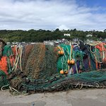Nets on the Cobb