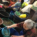 Photo de Warorot Market (Kad Luang)