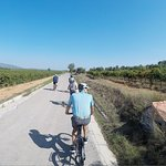 Near Barcelona, in the Penedès, enjoy a quiet itinerary and cycling on the best landscapes
