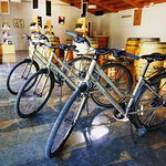 Our leisure bikes are ready at Can Suriol, fora bike and wine tour in the Penedès, near Barcelon