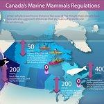 Canada's Marine Mammal Regulation