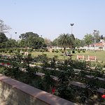 Garden and lawns inside Company Bagh