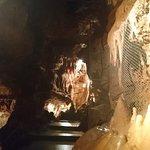 Photo de Grotte de Saint Cézaire