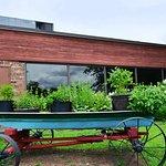 Herb Garden Boat