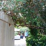Foto di Socratous Garden