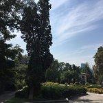 Фотография Ботанический сад им. А.В. Фомина