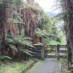 Photo of Village & Bays Tours - Stewart Island Experience