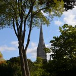 Salisbury cathedral from the garden of Arundells