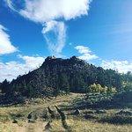 Bild från Medicine Bow National Forest