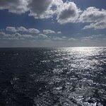 Photo of Starfish Glass Bottom Boats