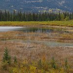 Vermilion Lakes from the Cave and Basin 2