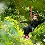 Great kids activity - Original Canopy Tour