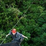 Backwards fall on the 220m zipline