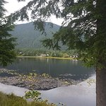 Wild Strawberry Lodge Photo
