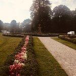 Gentle Garden Pathway Beauties