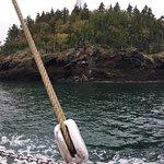 Φωτογραφία: Jolly Breeze Tall Ship Whale Adventures