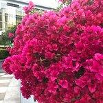 Foto de Yerba Buena Gardens