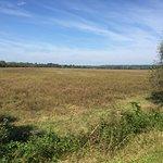 Φωτογραφία: Staunton River Battlefield State Park