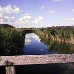 Het natuurpark