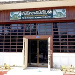 Φωτογραφία: The Savannakhet Dinosaur Museum