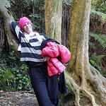 صورة فوتوغرافية لـ Coromandel Forest Park