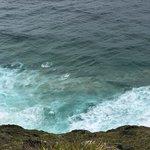 Photo of Cape Reinga Lighthouse Walk