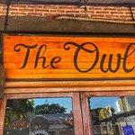 The Owlの写真